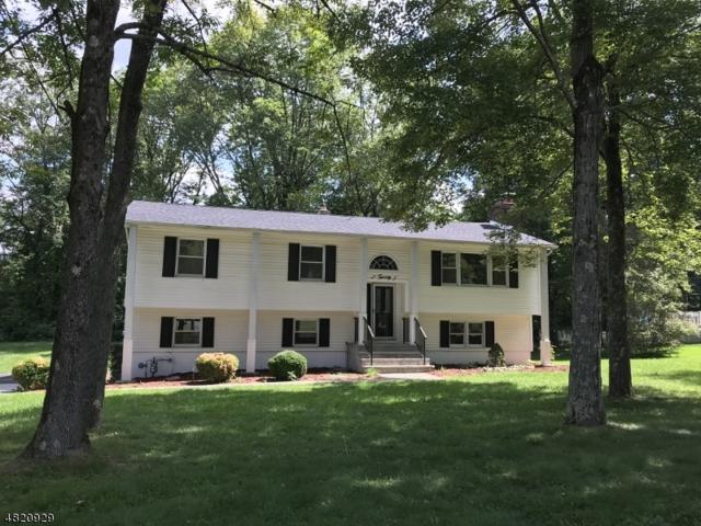 20 Robert St, Mount Olive Twp., NJ 07836 (MLS #3490041) :: William Raveis Baer & McIntosh
