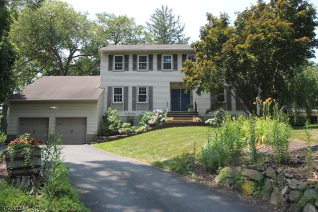 447 Rockaway St, Boonton Town, NJ 07005 (MLS #3492278) :: William Raveis Baer & McIntosh