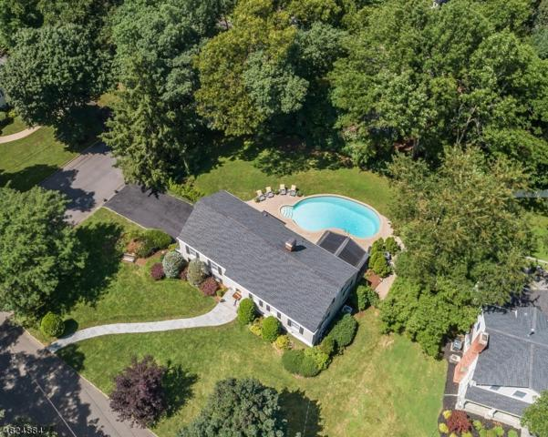 33 Joanna Way, Summit City, NJ 07901 (MLS #3493313) :: SR Real Estate Group