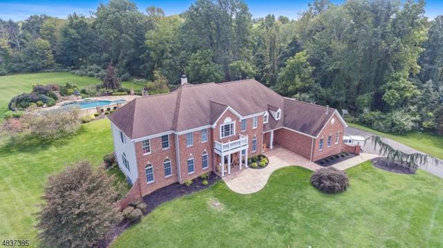 19 Middlesworth Farm Rd, Washington Twp., NJ 07853 (MLS #3501509) :: The Sue Adler Team