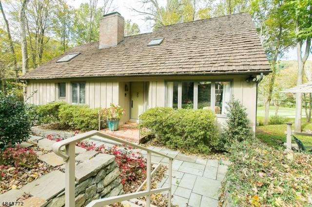 21 Cardinal Rd, Allamuchy Twp., NJ 07840 (MLS #3507797) :: The Dekanski Home Selling Team