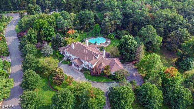 1 Pine Valley Way, Florham Park Boro, NJ 07932 (MLS #3528690) :: William Raveis Baer & McIntosh
