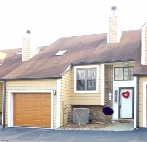 204 Joseph Ln, Mine Hill Twp., NJ 07803 (MLS #3529083) :: Pina Nazario