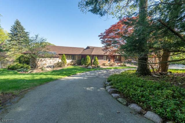 399 Ski Trl, Kinnelon Boro, NJ 07405 (MLS #3529246) :: The Dekanski Home Selling Team