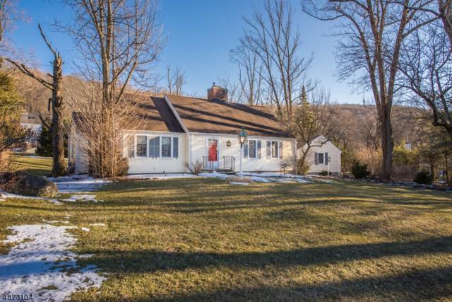 10 Cedar Waxwing Rd, Allamuchy Twp., NJ 07840 (MLS #3534716) :: Team Francesco/Christie's International Real Estate