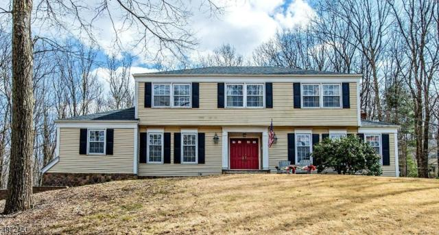 6 Tall Timber Dr, Washington Twp., NJ 07853 (#3539952) :: Group BK