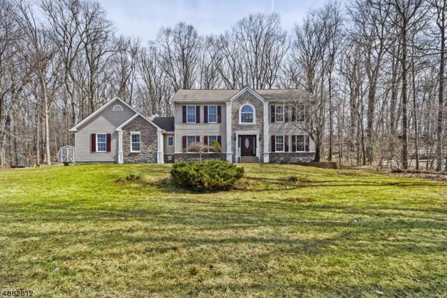 5 Sanford Rd, Mount Olive Twp., NJ 07828 (MLS #3542995) :: The Dekanski Home Selling Team