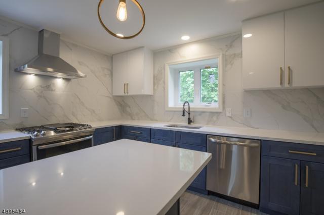 3 Mill St, Stockton Boro, NJ 08559 (#3554857) :: Jason Freeby Group at Keller Williams Real Estate