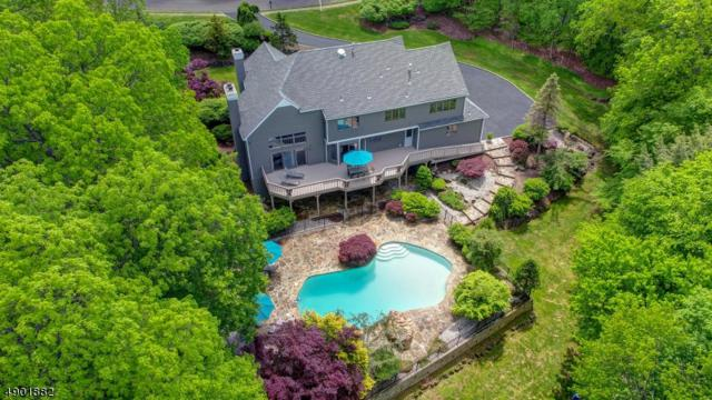 608 Emerald Trl, Bridgewater Twp., NJ 08807 (MLS #3560919) :: SR Real Estate Group