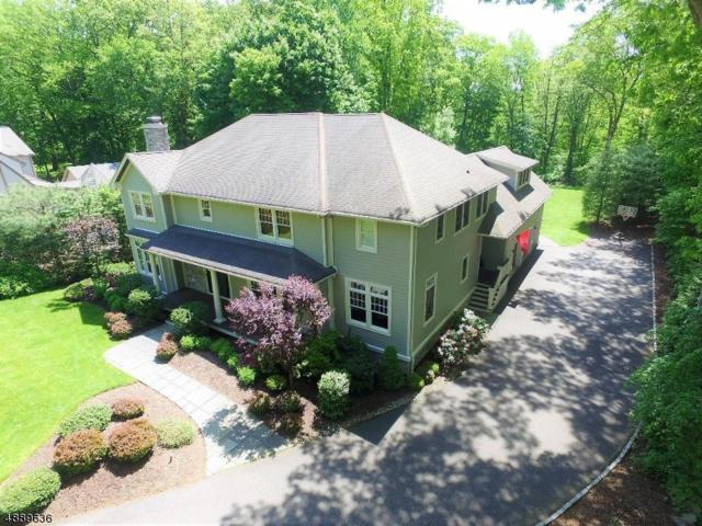 22 Woodland Ave, Mountain Lakes Boro, NJ 07046 (MLS #3575436) :: Weichert Realtors