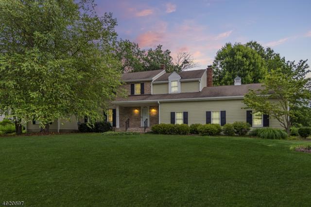 9 Old Farm Rd, Hanover Twp., NJ 07927 (MLS #3579019) :: SR Real Estate Group