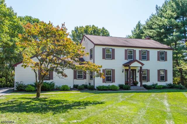 7 Old Coach Rd, Randolph Twp., NJ 07869 (MLS #3589009) :: Pina Nazario