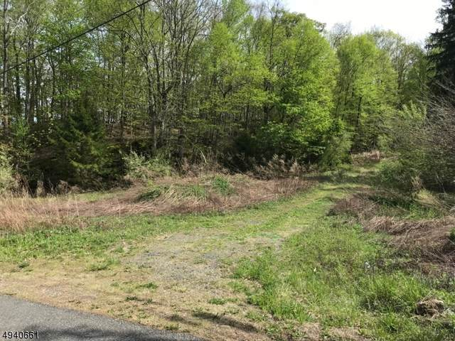 49 Mc Cloud Rd, Lafayette Twp., NJ 07848 (MLS #3596747) :: Pina Nazario
