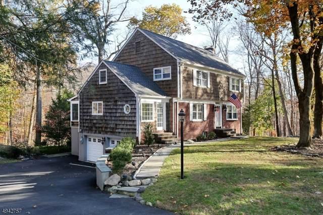 256 Long Meadow Rd, Kinnelon Boro, NJ 07405 (MLS #3598735) :: The Dekanski Home Selling Team