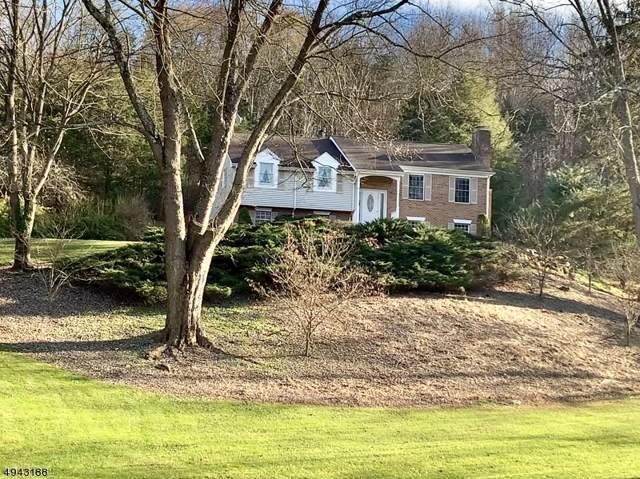 5 Mingle Rd, Blairstown Twp., NJ 07825 (MLS #3599410) :: SR Real Estate Group