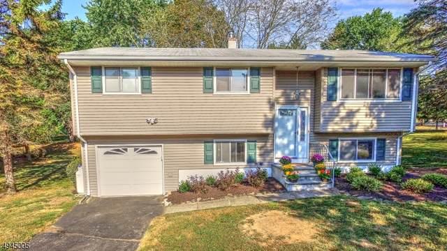 1 Hillside Dr, Clinton Town, NJ 08809 (#3600767) :: Proper Estates