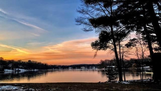 26 Lake Drive, Mountain Lakes Boro, NJ 07046 (MLS #3610646) :: SR Real Estate Group
