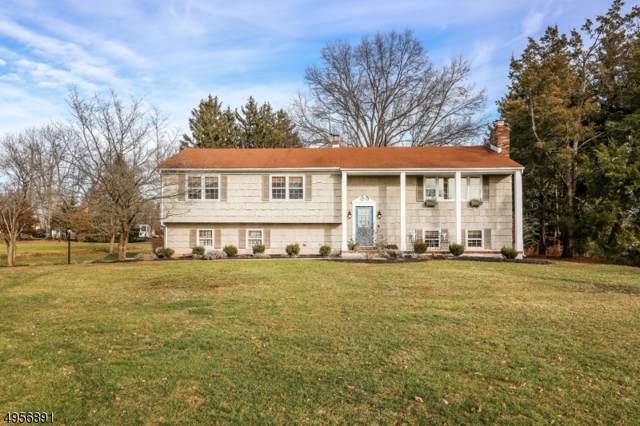 34 Riverview Ter, Hillsborough Twp., NJ 08844 (MLS #3611287) :: SR Real Estate Group