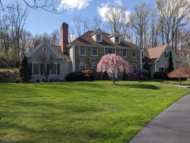 10 Old Mine Rd, Tewksbury Twp., NJ 08833 (MLS #3622145) :: Mary K. Sheeran Team