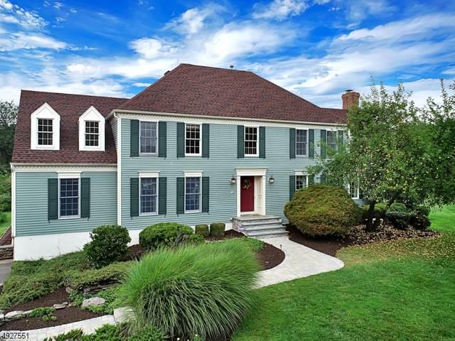 21 Uptom Pine Rd, Tewksbury Twp., NJ 08833 (MLS #3622594) :: Vendrell Home Selling Team