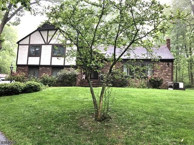 43 Long Hill Rd, Washington Twp., NJ 07853 (MLS #3633390) :: Pina Nazario