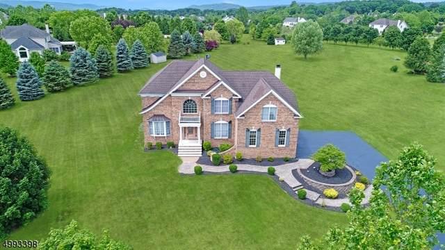 10 Halls Mill Rd, Franklin Twp., NJ 08802 (MLS #3643750) :: SR Real Estate Group