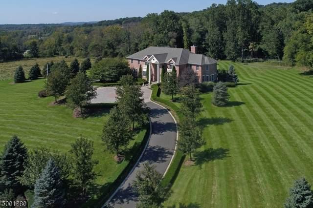 11 Springcroft Rd, Chester Twp., NJ 07931 (MLS #3651132) :: Coldwell Banker Residential Brokerage