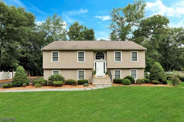 798 Route 202, Montville Twp., NJ 07082 (MLS #3653215) :: SR Real Estate Group