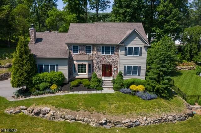 9 Kosakowski Drive, Morris Plains Boro, NJ 07950 (MLS #3664252) :: SR Real Estate Group