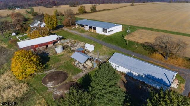 141 Oberly Rd, Pohatcong Twp., NJ 08865 (MLS #3677971) :: The Premier Group NJ @ Re/Max Central
