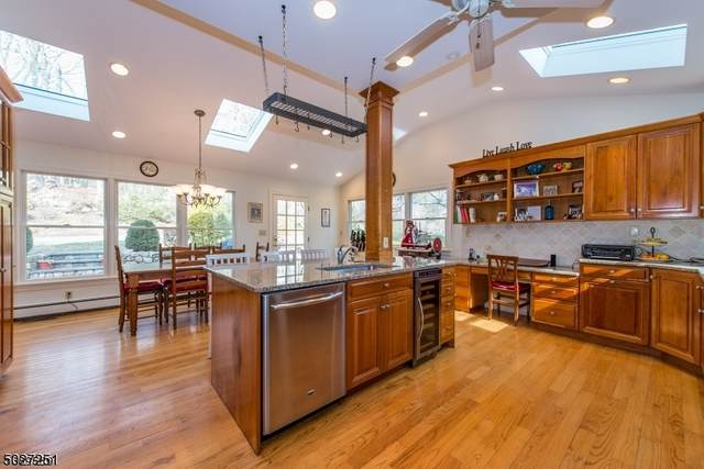255 Boulevard, Mountain Lakes Boro, NJ 07046 (MLS #3681133) :: SR Real Estate Group