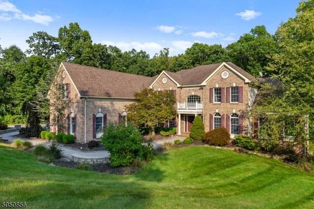 46 Morgan Dr, Sparta Twp., NJ 07871 (MLS #3694360) :: Team Braconi   Christie's International Real Estate   Northern New Jersey