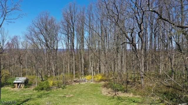 0 Pleasant Plains Road, Long Hill Twp., NJ 07980 (MLS #3701744) :: Team Braconi | Christie's International Real Estate | Northern New Jersey