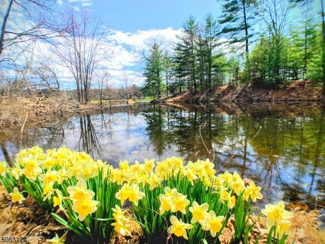 216 Lake Shore North D, Montague Twp., NJ 07827 (MLS #3705020) :: The Michele Klug Team | Keller Williams Towne Square Realty