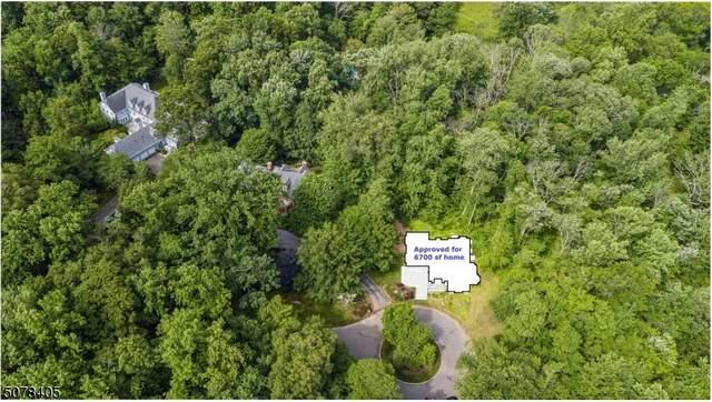 98 Beech Hollow Ln, Princeton Twp., NJ 08540 (MLS #3718320) :: Team Braconi | Christie's International Real Estate | Northern New Jersey