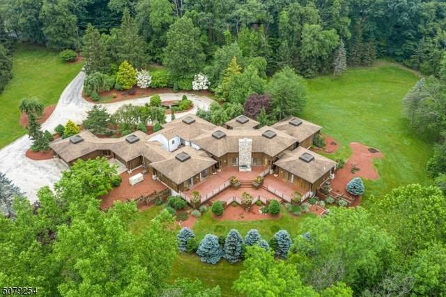 51 Hoagland Rd, Blairstown Twp., NJ 07825 (MLS #3719149) :: Team Francesco/Christie's International Real Estate