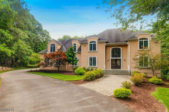 3 Pheasant Run, Boonton Twp., NJ 07005 (#3725500) :: Rowack Real Estate Team