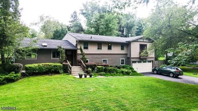 146 Circle Dr, Long Hill Twp., NJ 07946 (MLS #3727807) :: The Sikora Group