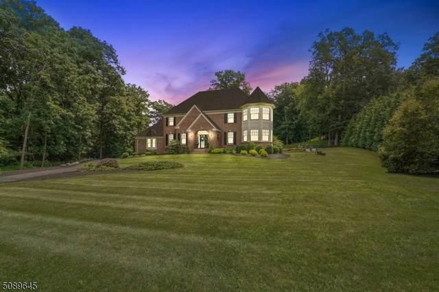 10 Prosperity Drive, Sparta Twp., NJ 07871 (MLS #3728516) :: Corcoran Baer & McIntosh