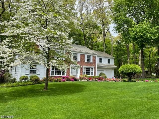 272 Fairmount Ave, Chatham Boro, NJ 07928 (MLS #3738044) :: Stonybrook Realty