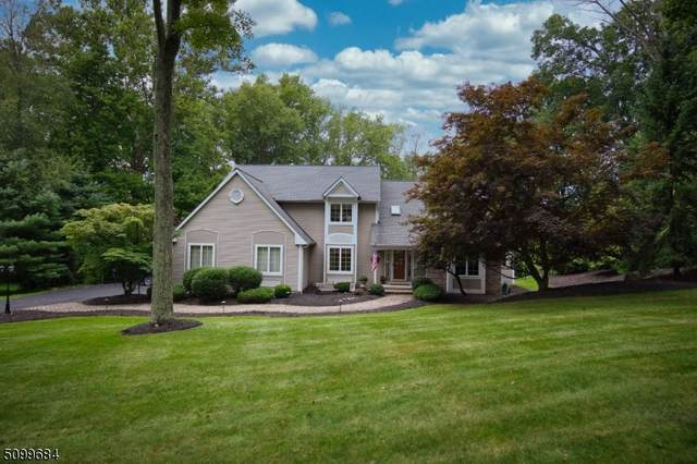 2 Chaucer Dr, Independence Twp., NJ 07840 (MLS #3738511) :: Stonybrook Realty