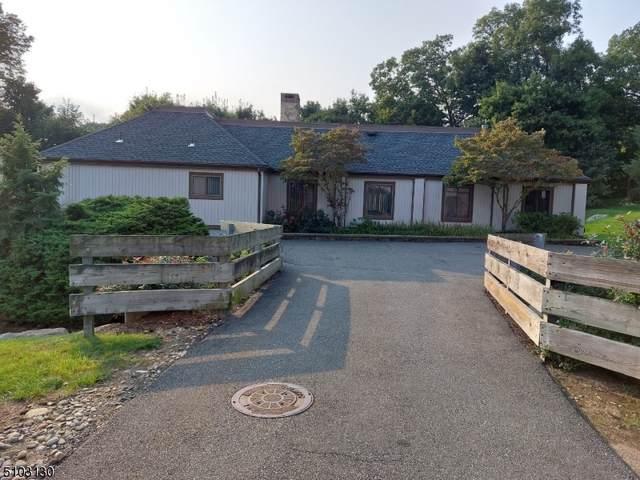 113 Alpine Ct, Stanhope Boro, NJ 07874 (MLS #3740504) :: Team Braconi | Christie's International Real Estate | Northern New Jersey