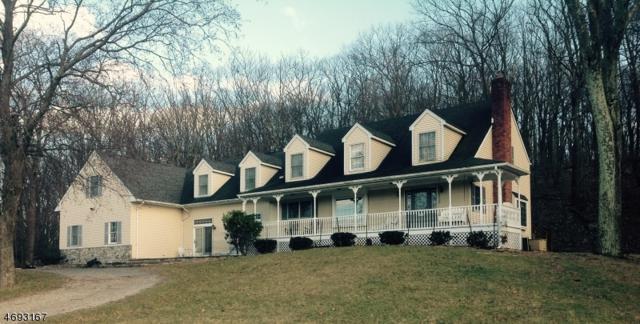 503 Drakestown Rd, Washington Twp., NJ 07853 (MLS #3368560) :: William Raveis Baer & McIntosh