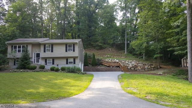 917 Ridge Rd, Stillwater Twp., NJ 07860 (MLS #3397098) :: The Dekanski Home Selling Team