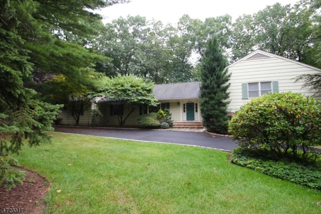 12 Shawnee Trl, Montville Twp., NJ 07045 (MLS #3397289) :: The Dekanski Home Selling Team