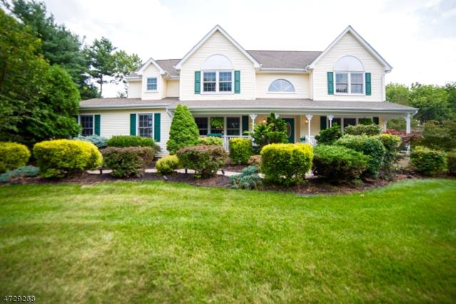 5 Conley Dr, Hillsborough Twp., NJ 08844 (MLS #3402634) :: The Dekanski Home Selling Team
