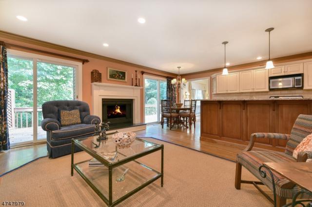 89 Independence Way, Morris Twp., NJ 07960 (MLS #3420797) :: The Dekanski Home Selling Team
