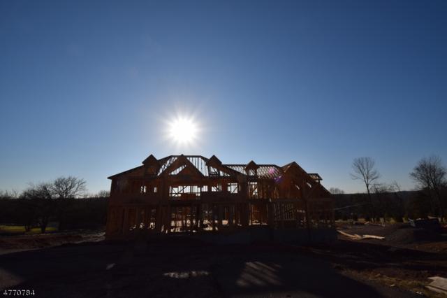 1706 Washington Valley Rd, Bridgewater Twp., NJ 08836 (MLS #3440972) :: SR Real Estate Group