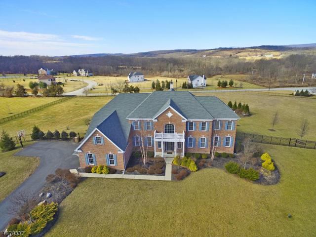 39 High Ridge Ln, Frankford Twp., NJ 07822 (MLS #3448686) :: William Raveis Baer & McIntosh