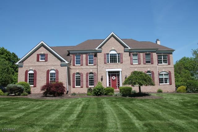 10 Perry Rd, Clinton Twp., NJ 08801 (MLS #3448839) :: The Sue Adler Team